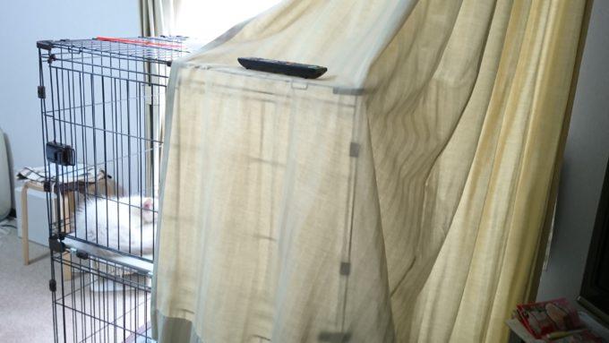猫の入ったケージに掛けられたカーテン。
