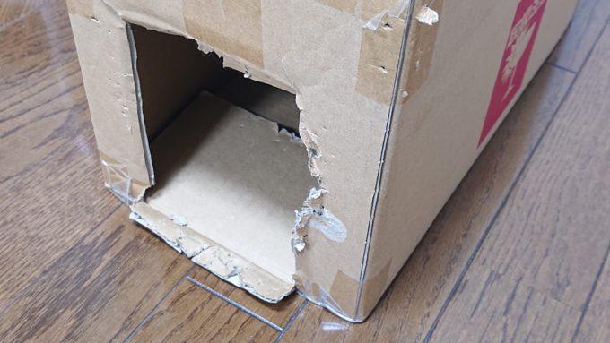 猫に噛まれてボロボロになった段ボールの箱。
