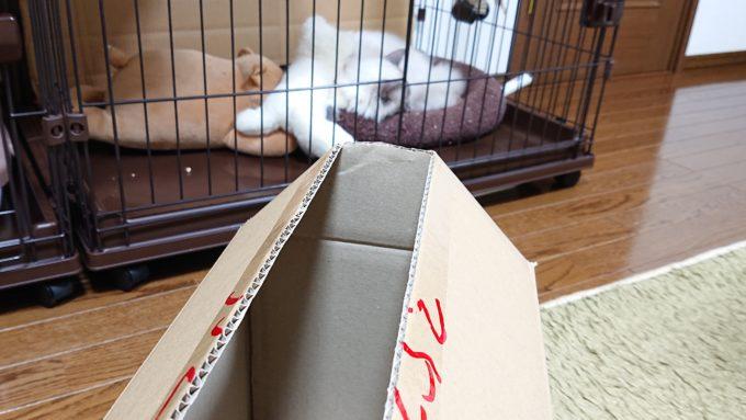 箱の高さを確認している所。