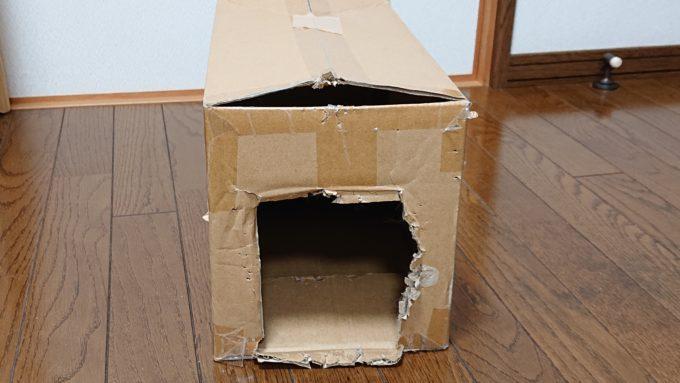 猫が齧りついた段ボール箱。少々狭め。