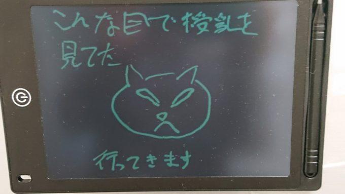 嫉妬に狂った猫の絵(全容)。目の表情が特に良く描かれている。