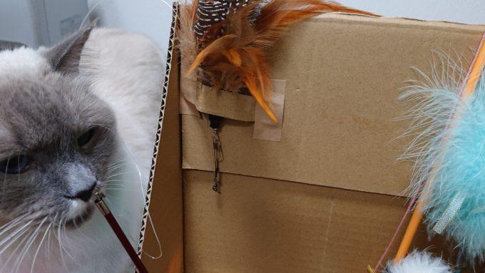 壁面に取り付けた猫じゃらしの部品。絡まり防止。