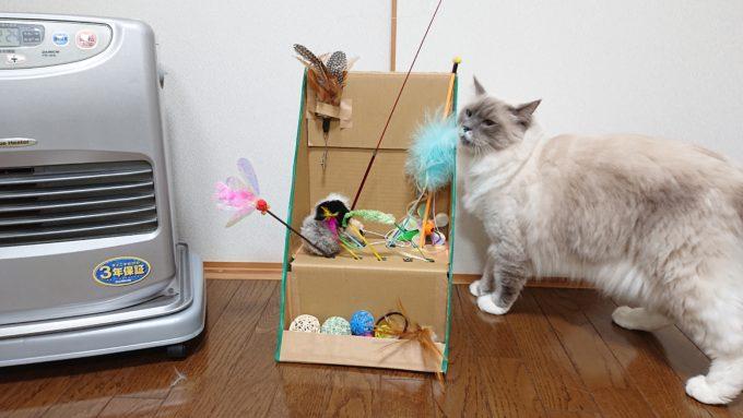 猫じゃらし収納ボックスの完成形と猫。猫は見に来てるだけ。
