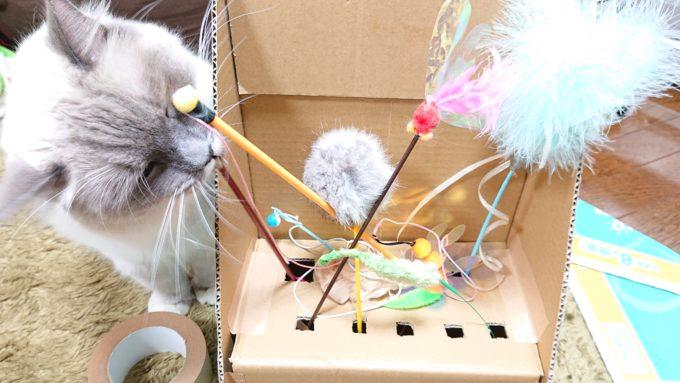 猫じゃらし収納ボックス(猫齧り中)